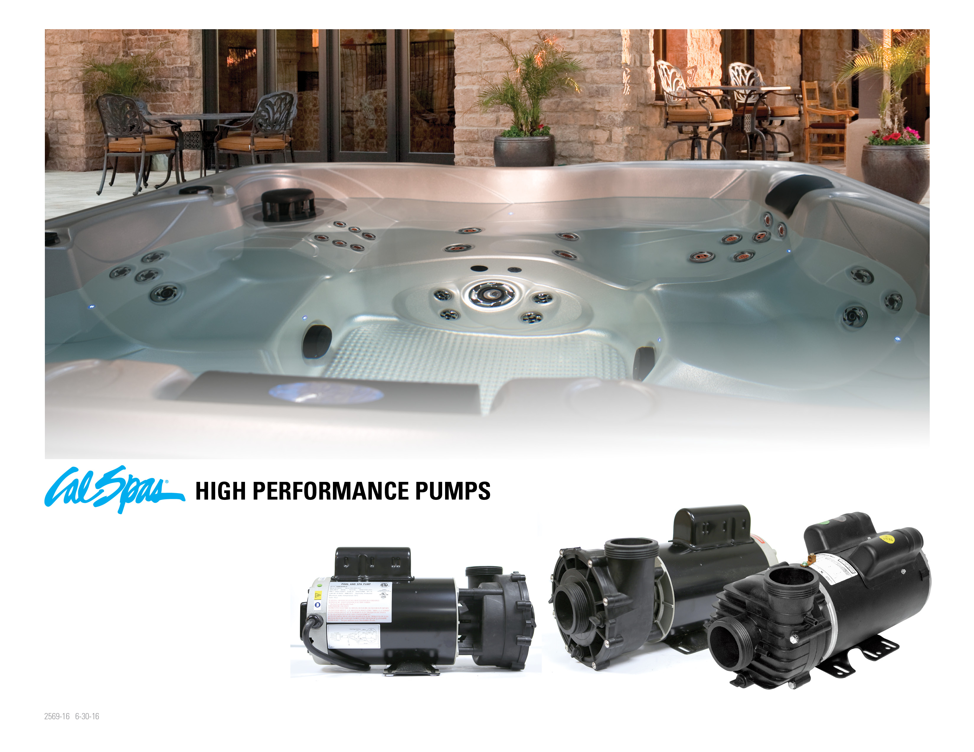The pump is the heart of the spa. Spa pumps run frequently throughout the  day to circulate hot water within your spa to help maintain temperature and  help ...